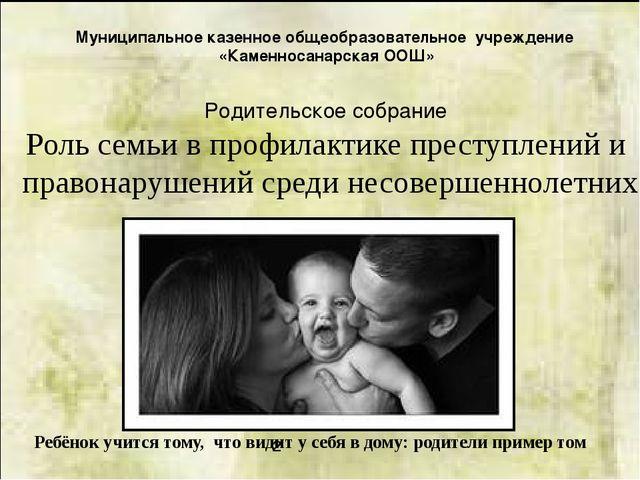 Муниципальное казенное общеобразовательное учреждение «Каменносанарская ООШ»...