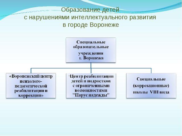 Образование детей с нарушениями интеллектуального развития в городе Воронеже