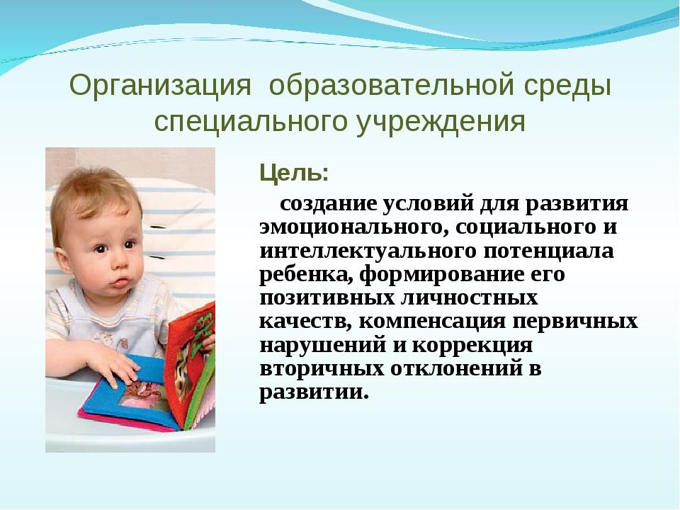 Организация образовательной среды специального учреждения Цель: создание усл...