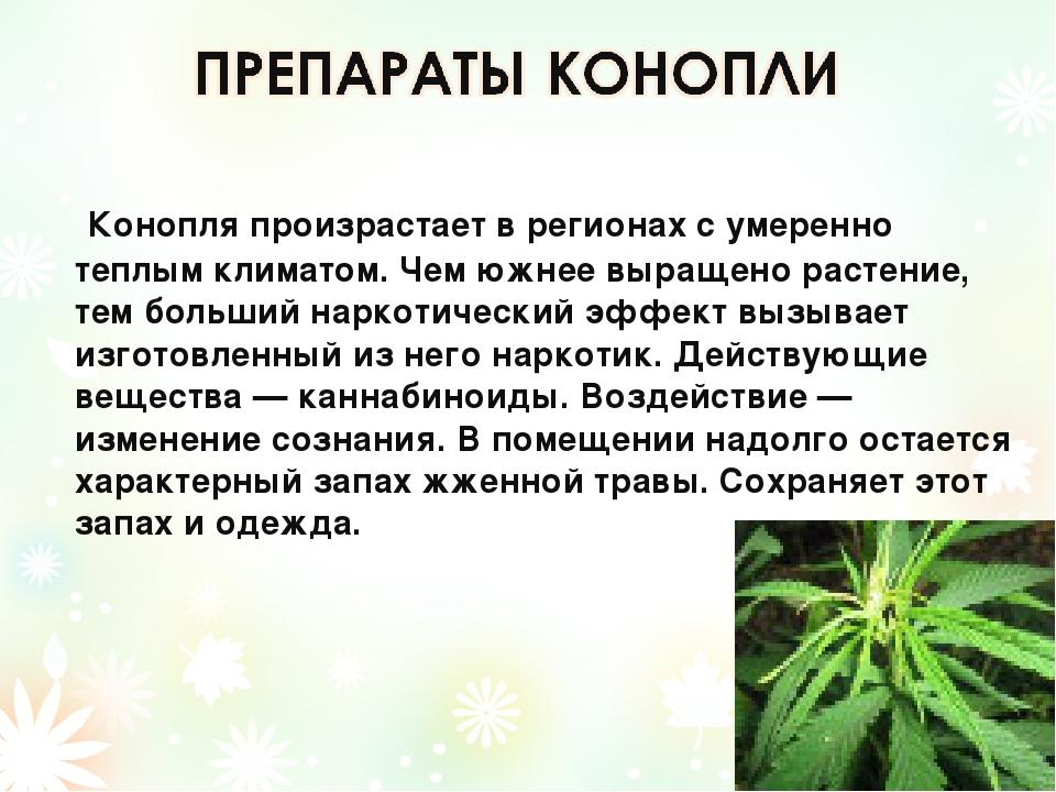Конопля влияет на потомство чехол с марихуаной айфон 4