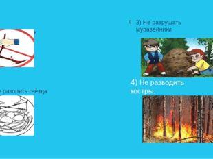 1).Не ломать веток 2) Не разорять гнёзда 3) Не разрушать муравейники 4) Не р