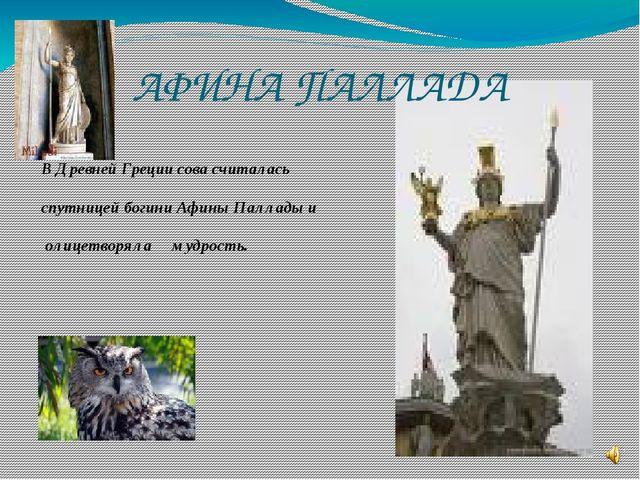 АФИНА ПАЛЛАДА В Древней Греции сова считалась спутницей богини Афины Паллады...