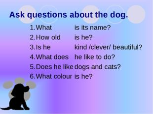 Ask questions about the dog. What How old Is he What does Does he like What c
