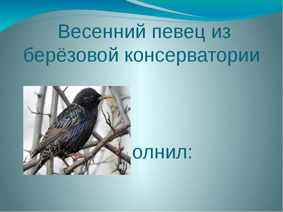 Весенний певец из берёзовой консерватории Работу выполнил: Розанов Дмитрий у...