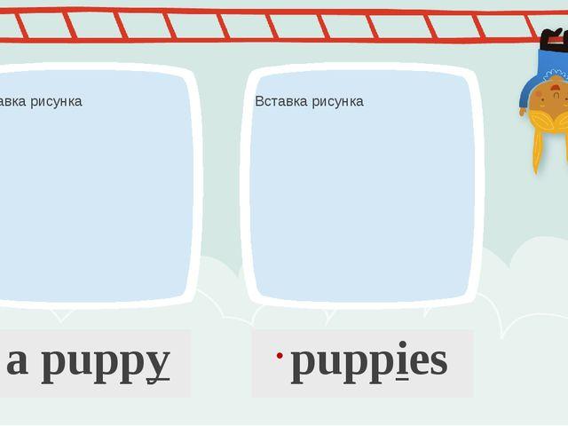 a puppy puppies