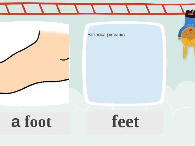 a foot feet ПРИМЕЧАНИЕ Чтобы изменить изображение на этом слайде, выберите и...