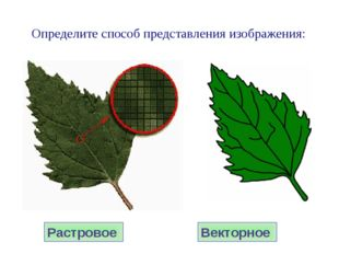 Растровое Векторное Определите способ представления изображения: