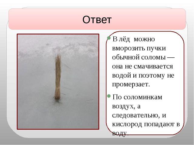 В лёд можно вморозить пучки обычной соломы — она не смачивается водой и поэт...