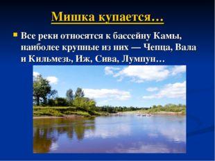 Мишка купается… Все реки относятся к бассейну Камы, наиболее крупные из них—