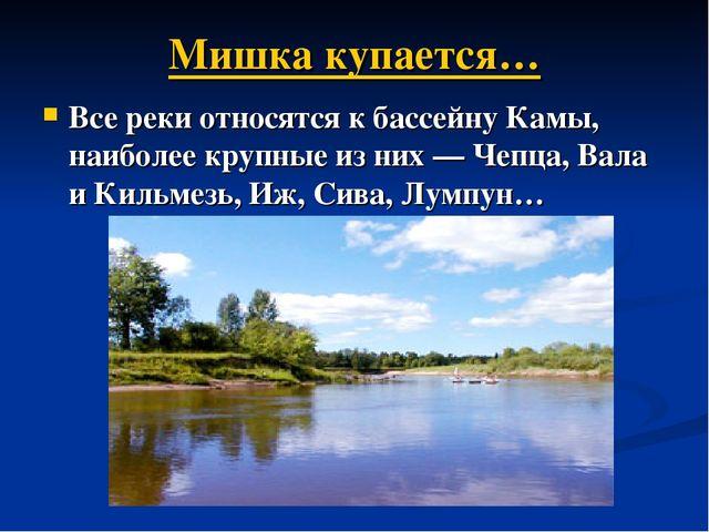 Мишка купается… Все реки относятся к бассейну Камы, наиболее крупные из них—...