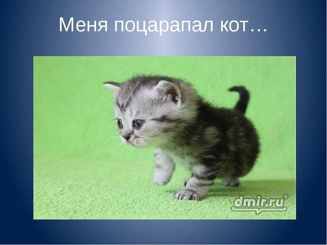 Меня поцарапал кот…