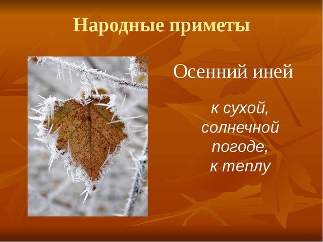 Народные приметы Осенний иней к сухой, солнечной погоде, к теплу