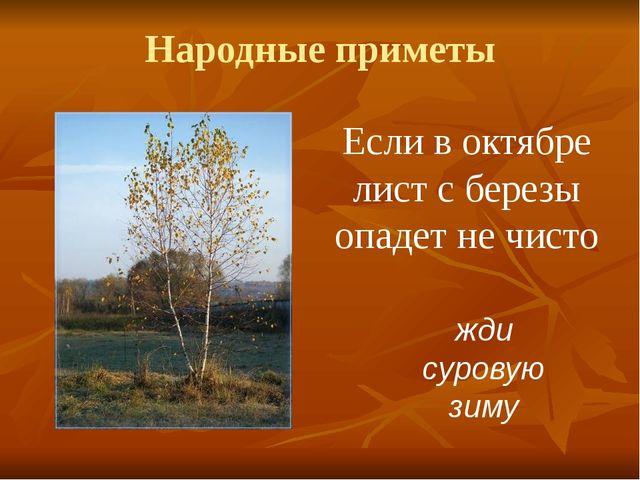 Народные приметы Если в октябре лист с березы опадет не чисто жди суровую зиму
