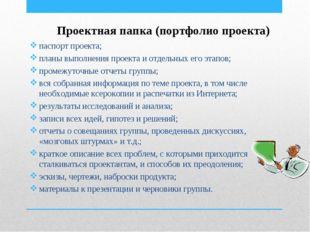 Проектная папка (портфолио проекта) паспорт проекта; планы выполнения проекта