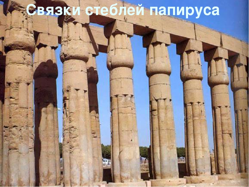 Связки стеблей папируса