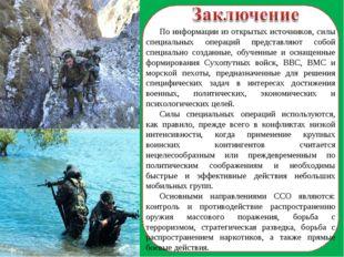 По информации из открытых источников, силы специальных операций представляют