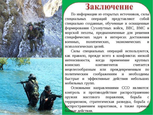По информации из открытых источников, силы специальных операций представляют...