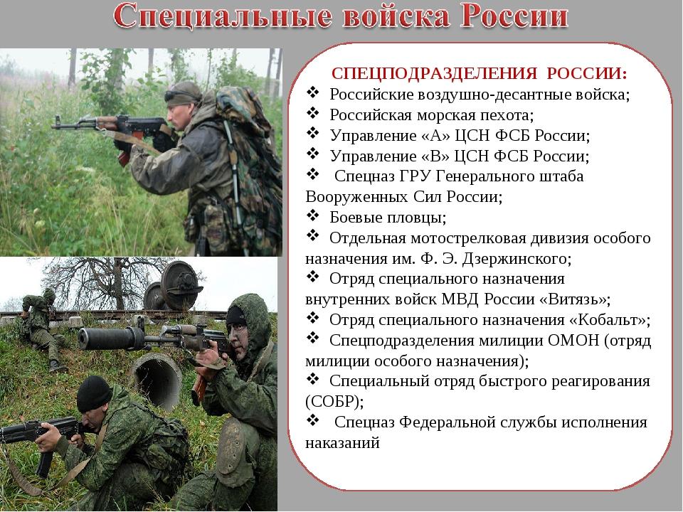 СПЕЦПОДРАЗДЕЛЕНИЯ РОССИИ: Российские воздушно-десантные войска; Российская м...