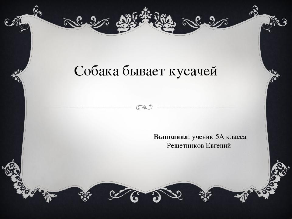 Собака бывает кусачей Выполнил: ученик 5А класса Решетников Евгений