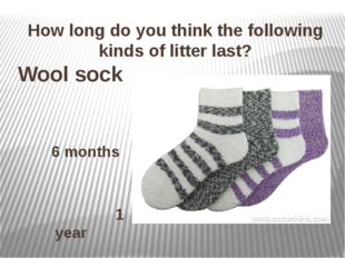 How long do you think the following kinds of litter last? Wool sock 6 months