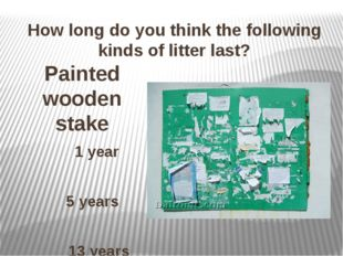 How long do you think the following kinds of litter last? Painted wooden stak