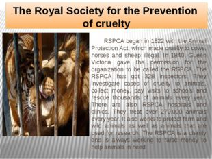 The Royal Society for the Prevention of cruelty RSPCA began in 1822 with the
