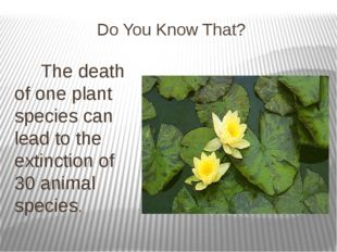 Do You Know That? The death of one plant species can lead to the extinction o