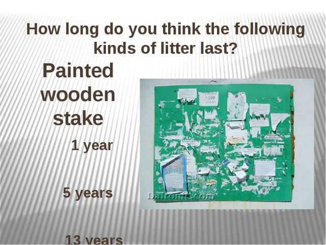 How long do you think the following kinds of litter last? Painted wooden stak...