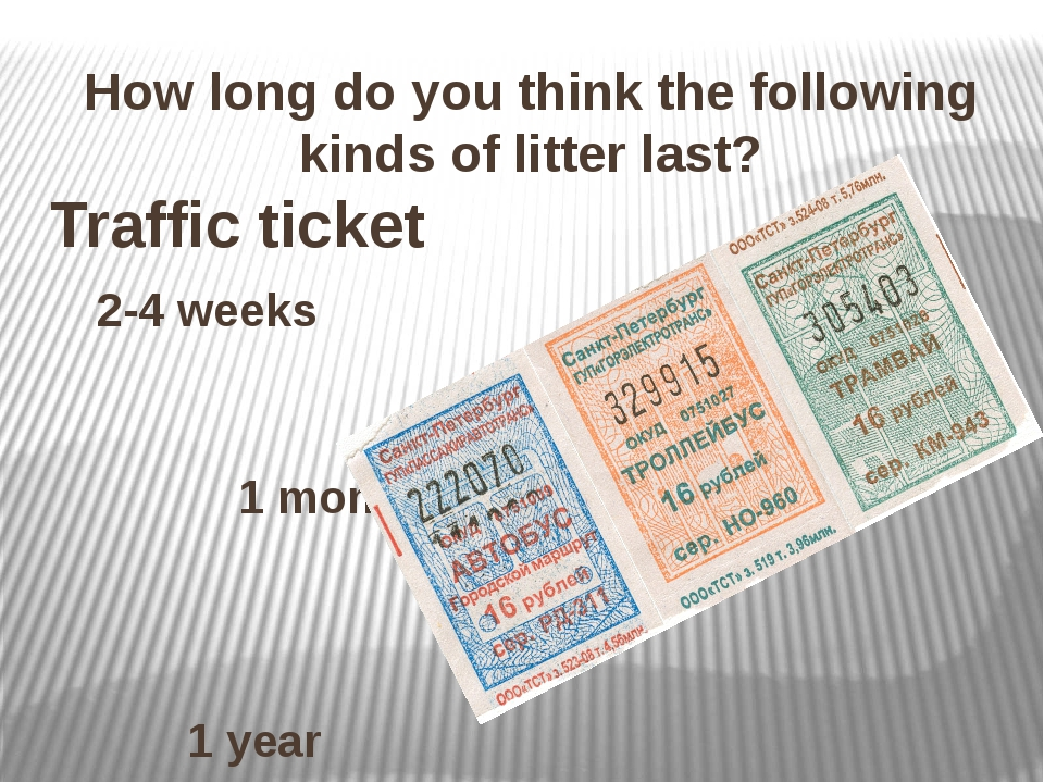 How long do you think the following kinds of litter last? Traffic ticket 2-4...