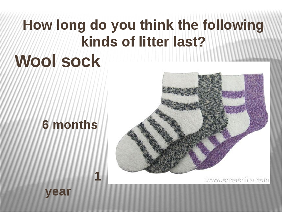 How long do you think the following kinds of litter last? Wool sock 6 months...