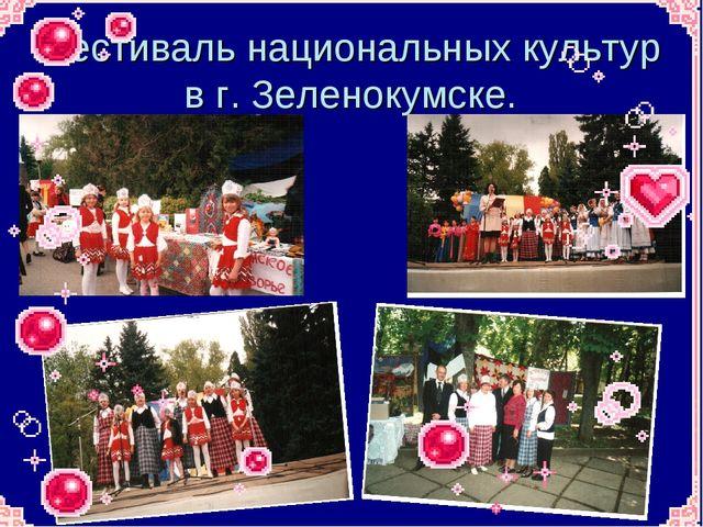 Фестиваль национальных культур в г. Зеленокумске.