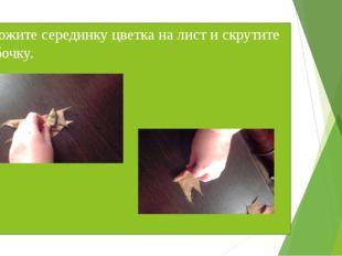 Положите серединку цветка на лист и скрутите трубочку.
