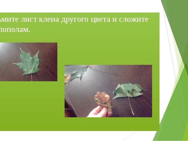 Возьмите лист клена другого цвета и сложите его пополам.