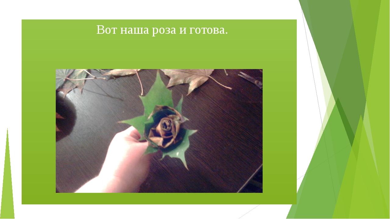 Вот наша роза и готова.