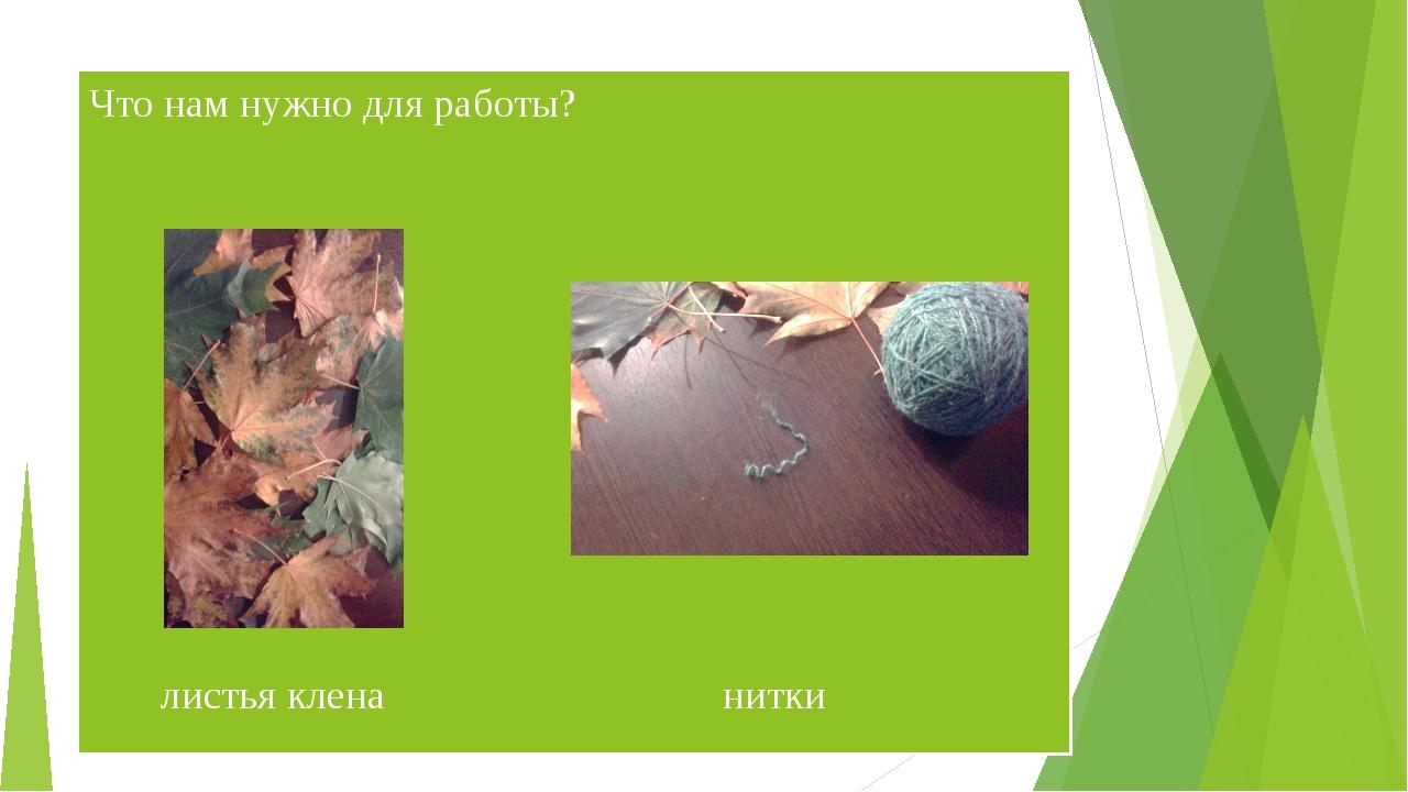 Что нам нужно для работы? листья клена нитки