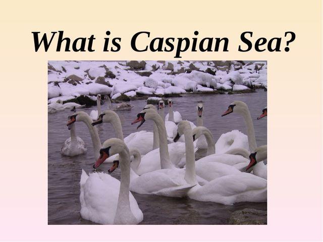 What is Caspian Sea?