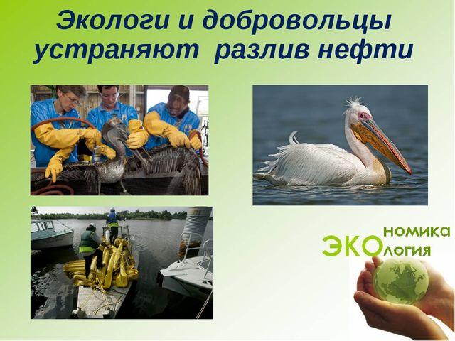 Чистый город Экологи и добровольцы устраняют разлив нефти