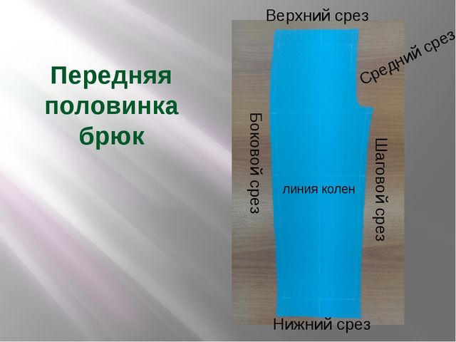 Передняя половинка брюк Боковой срез Шаговой срез Верхний срез Нижний срез Ср...
