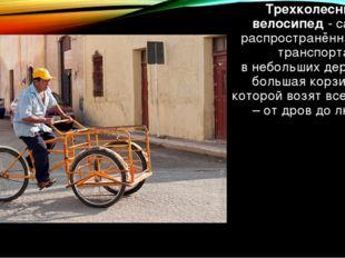 Трехколесный велосипед-самый распространённый вид транспорта внебольшихде
