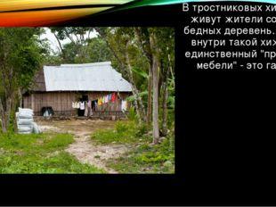 В тростниковых хижинах живут жители совсем бедных деревень. Часто внутри тако