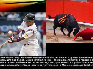 Национальным видом спорта Мексики считается бой быков. Во всех крупных мексик