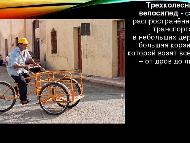 Трехколесный велосипед-самый распространённый вид транспорта внебольшихде...