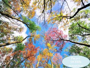 Рисует осень акварелью Рисует ОСЕНЬ акварелью