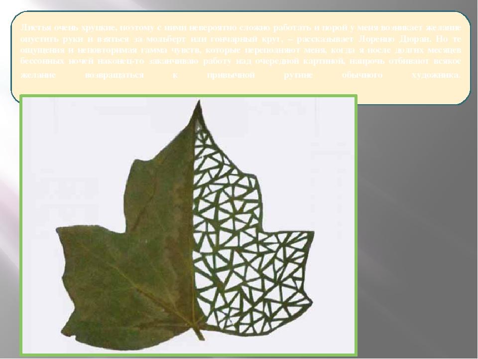 Листья очень хрупкие, поэтому с ними невероятно сложно работать и порой у ме...