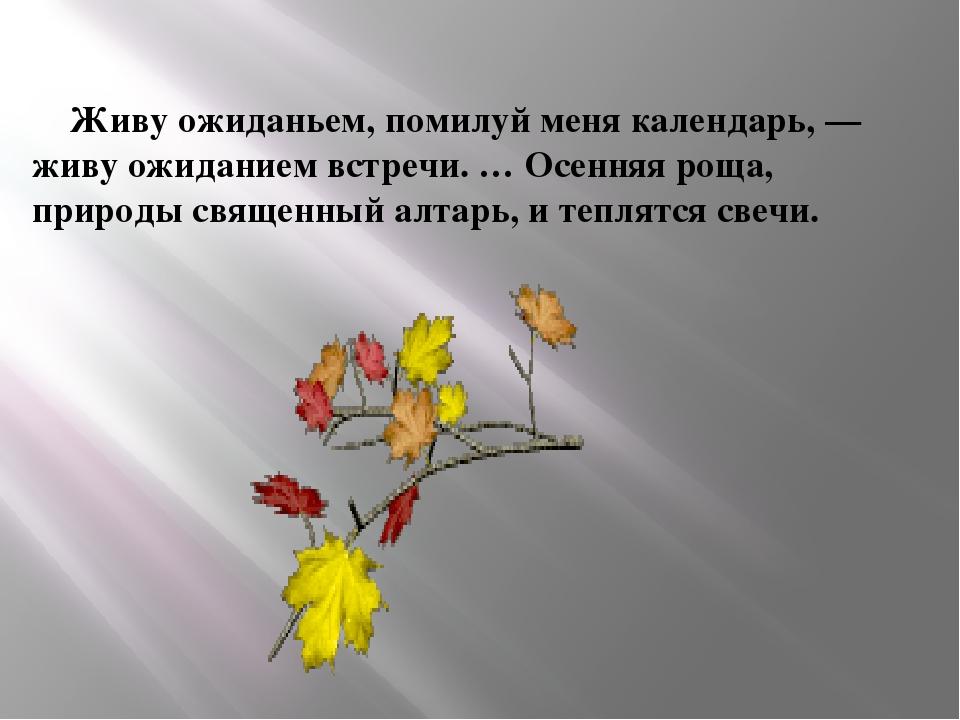 Живу ожиданьем, помилуй меня календарь, — живу ожиданием встречи. … Осенняя...