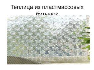 Теплица из пластмассовых бутылок