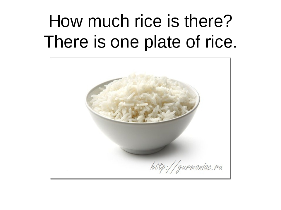 How much rice is there? There is one plate of rice.