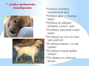 Символ преданности, благодарности Собака человеку неизменный друг Собака друг