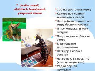 Символ сытой, свободной, беззаботной, разгульной жизни Собака достойна корму