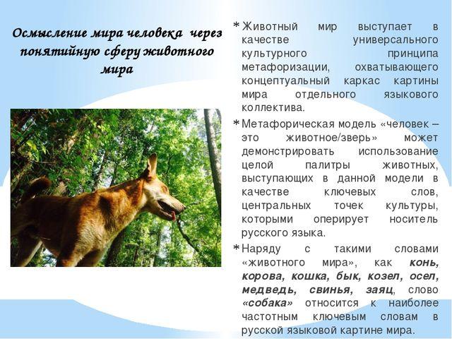 Животный мир выступает в качестве универсального культурного принципа метафо...